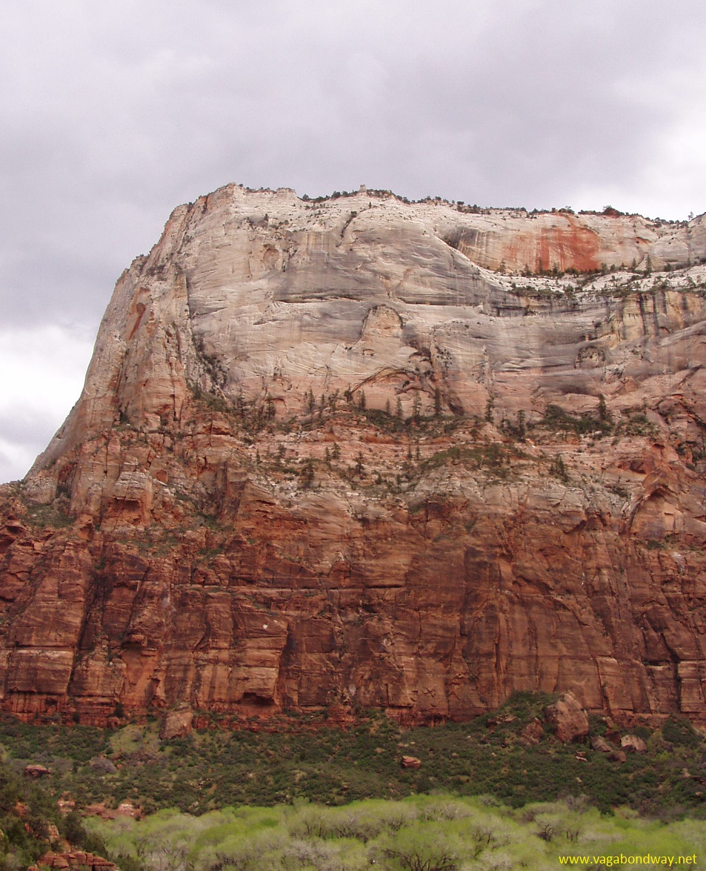 Landscape in Zion National Park, Utah
