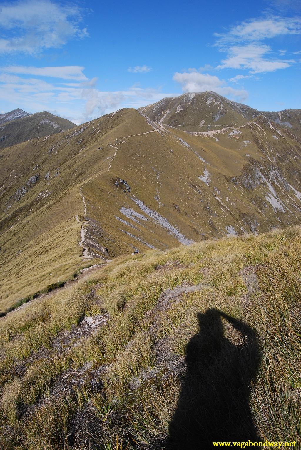 Kepler shadow shot, NZ