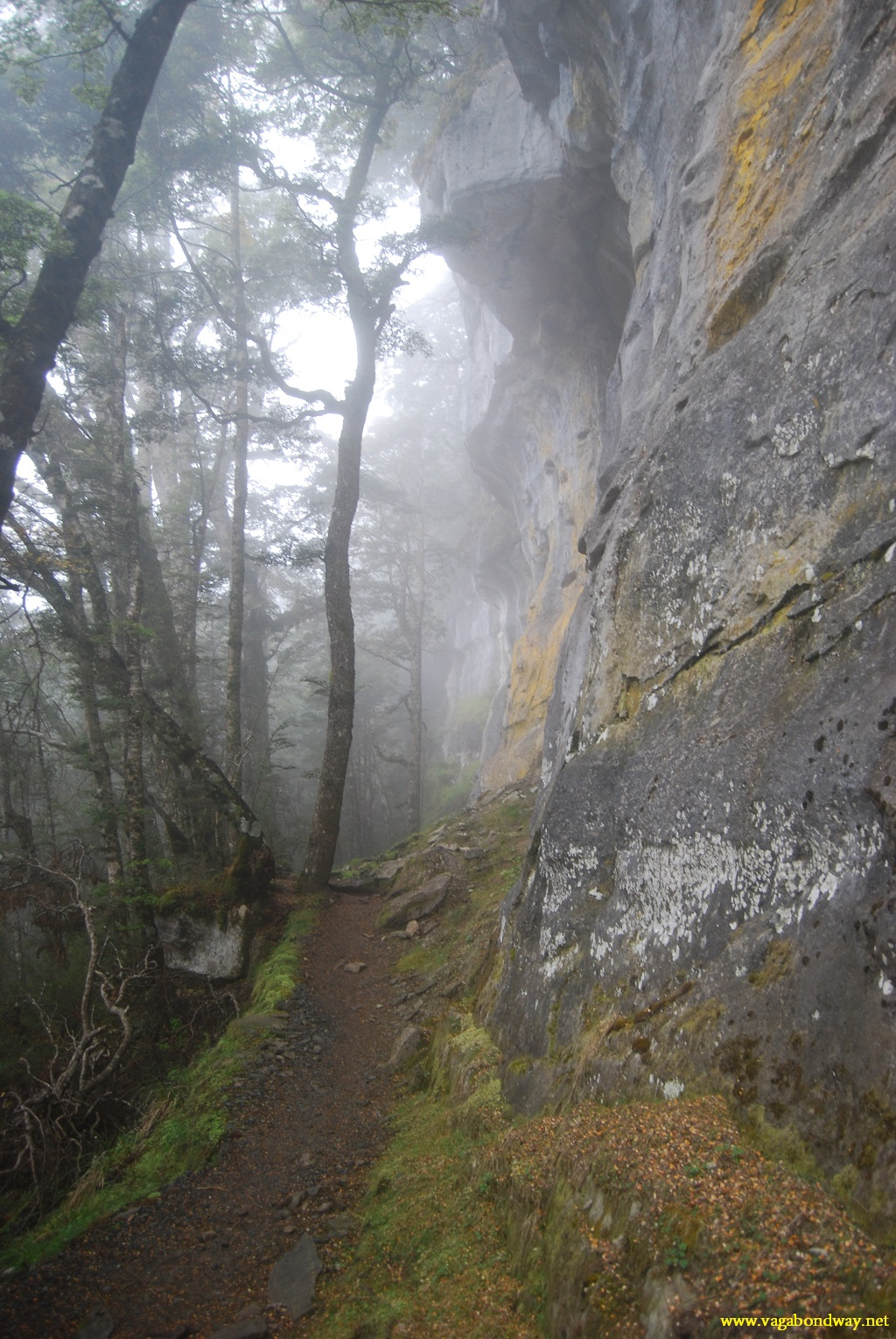 hike by misty rock
