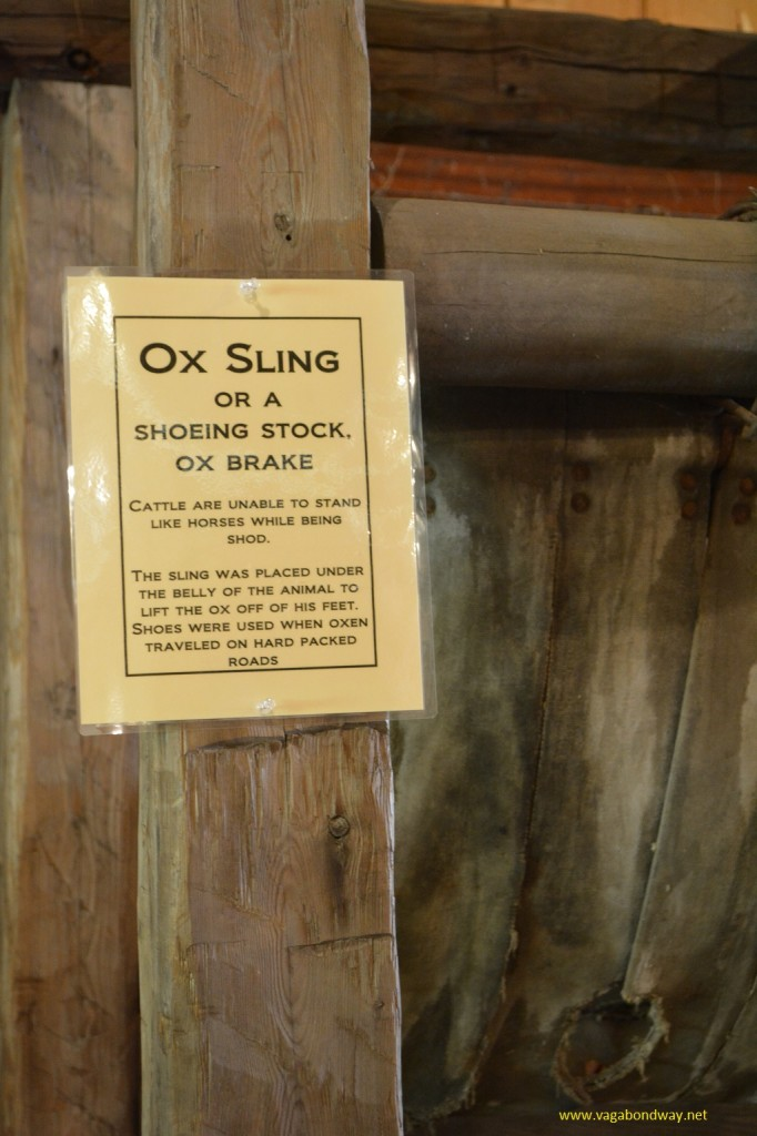 Ox sling close up