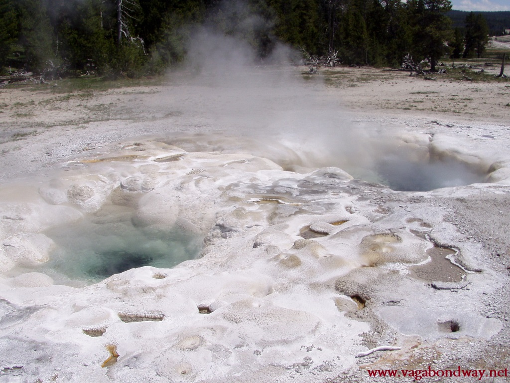 thermals in yellowstone