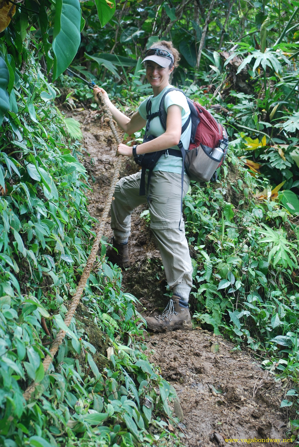 Hiking Adventure in Costa Rican Jungle