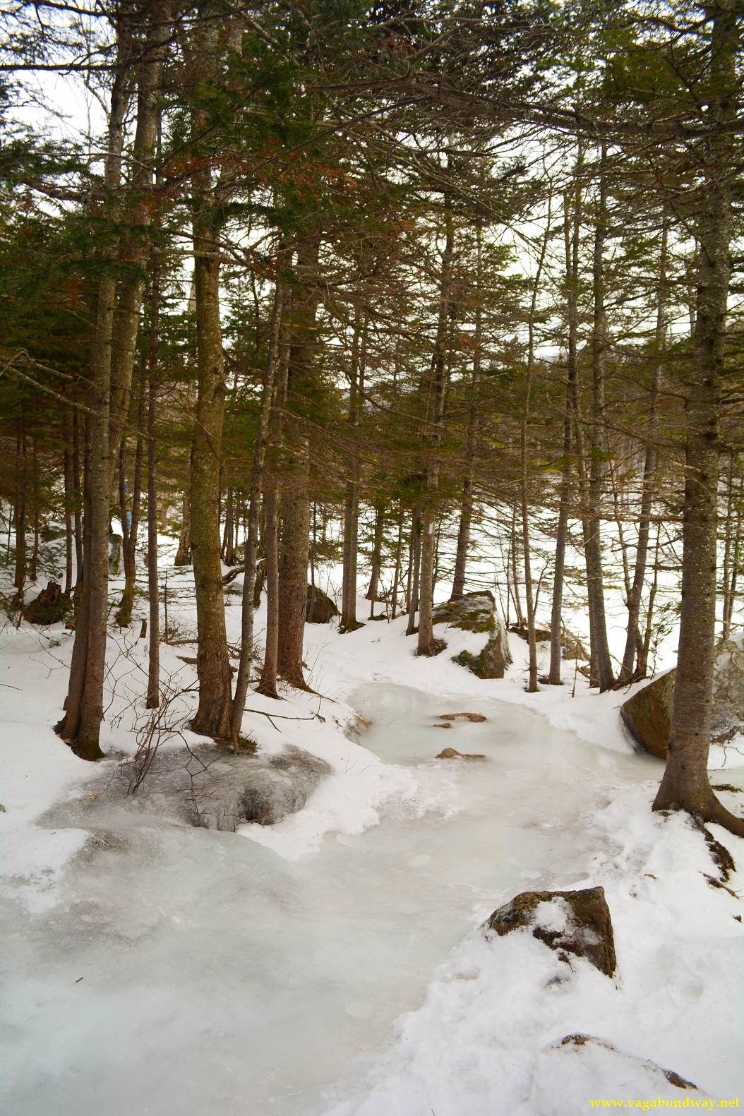 Hiking ice stream NH