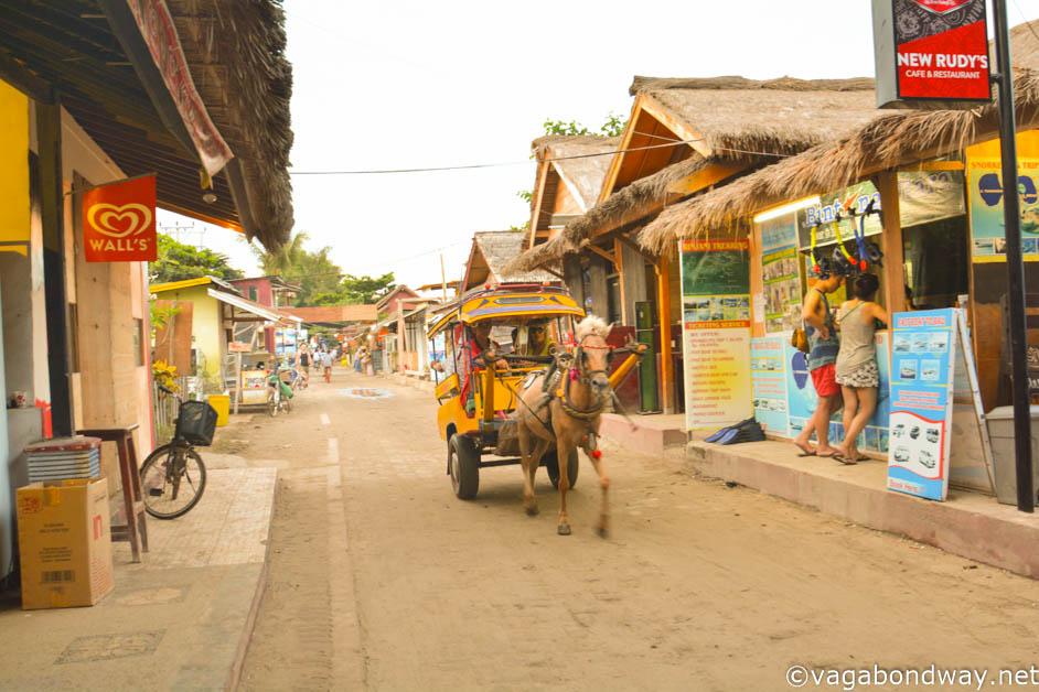 Horse cart on Gili Trawangan (1 of 1)