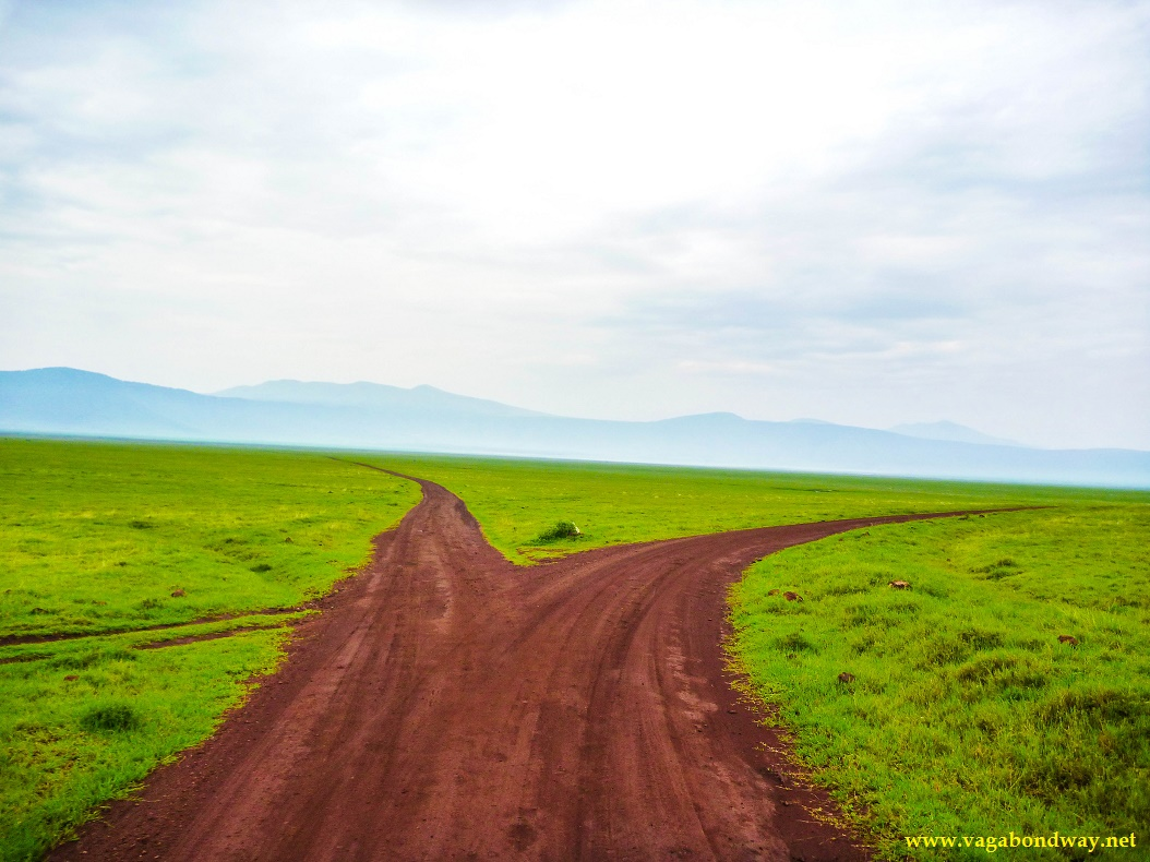 roads in Ngorongoro crater