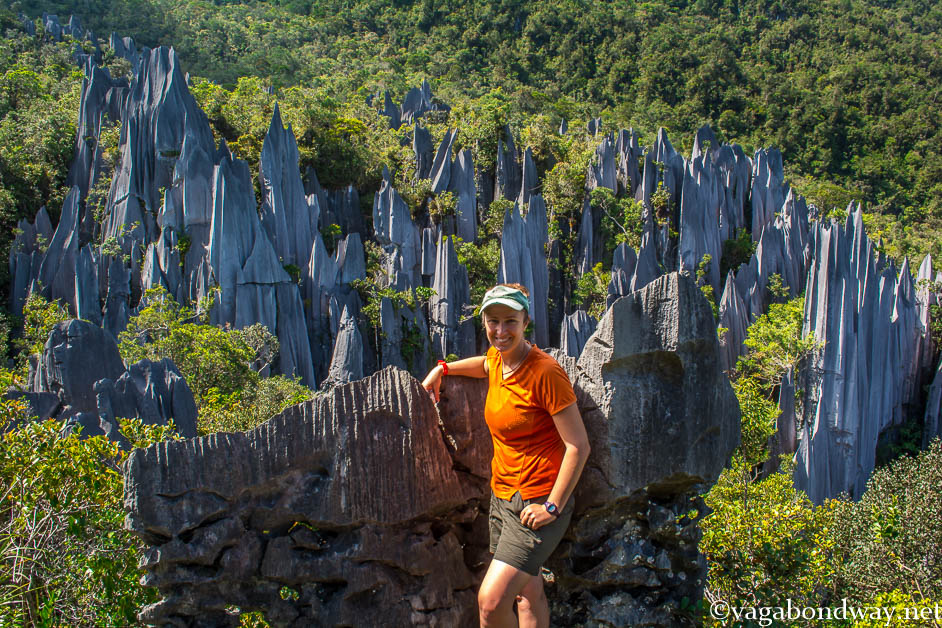 Pinnacles Mulu National Park Vagabond Way