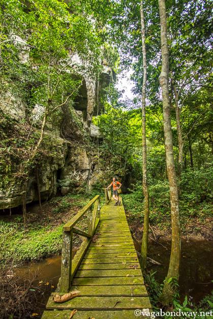 Boardwalk in Niah Caves Malaysia