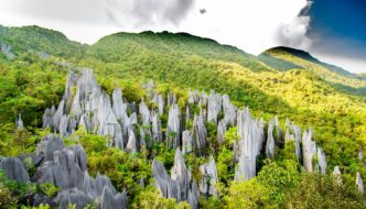 How to Hike Unique Pinnacles at Mulu in Beautiful Borneo Malaysia