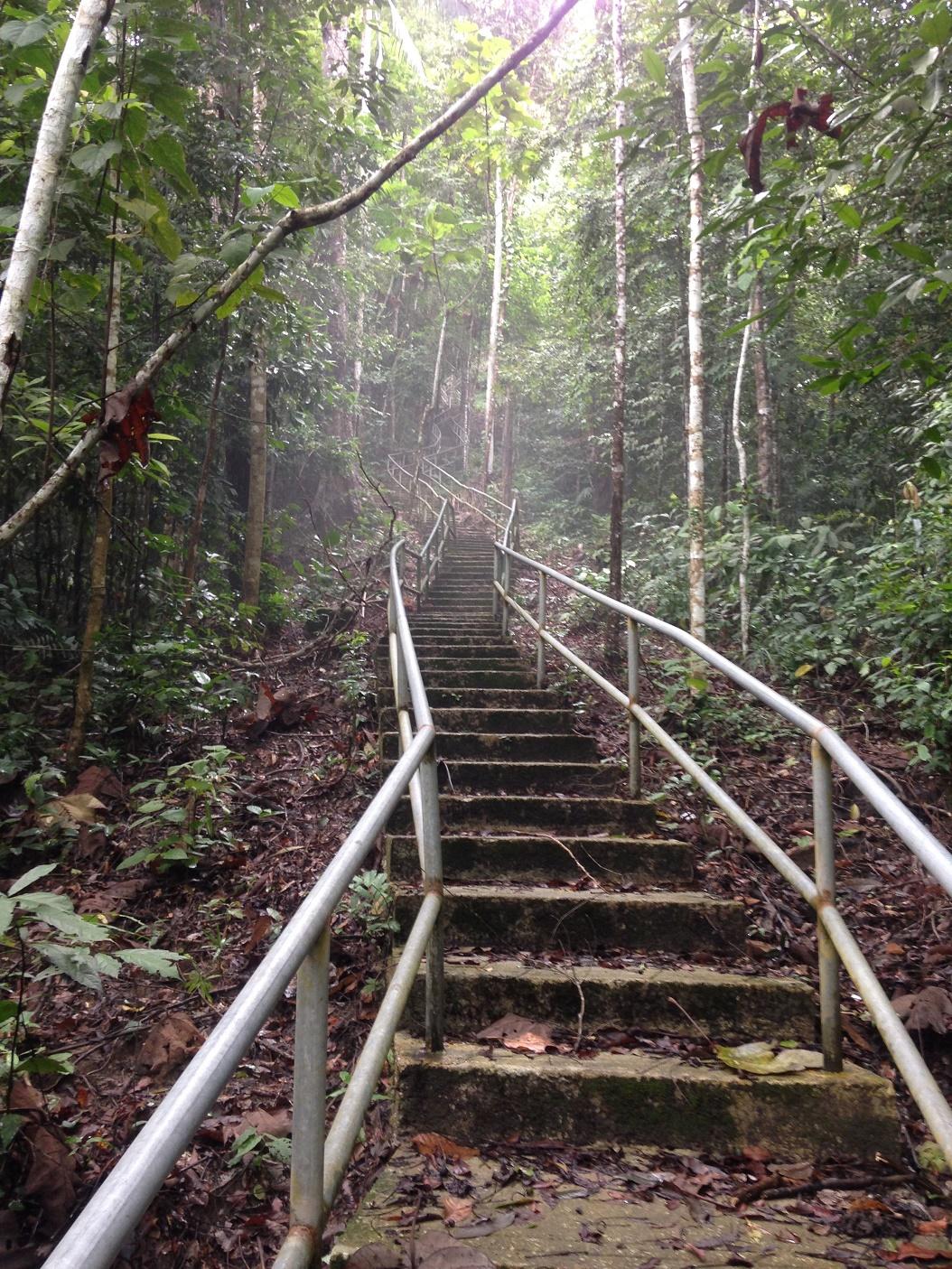 gunung-raya-Langkawi Hikes