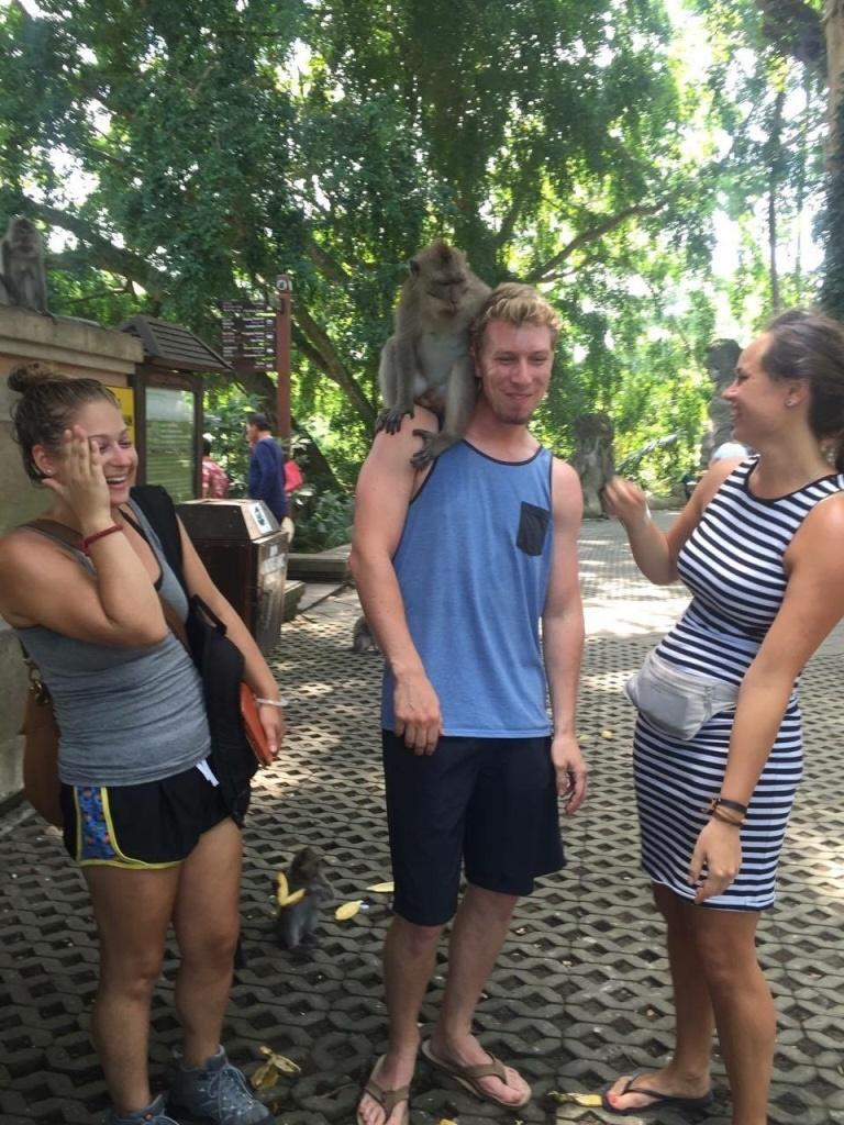 Monkey forest- Ubud