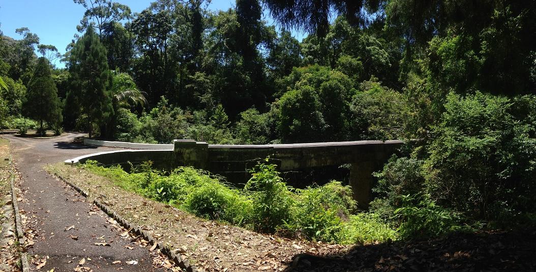 penang hikes-aqueduct-3