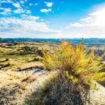 A Photo Journey Through Theodore Roosevelt National Park